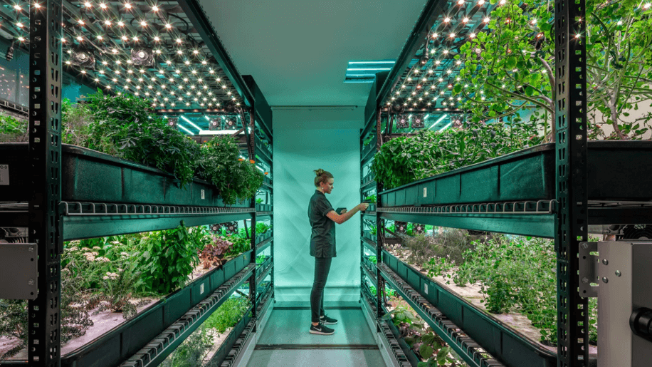 livekindly_vertical_farming_new_york